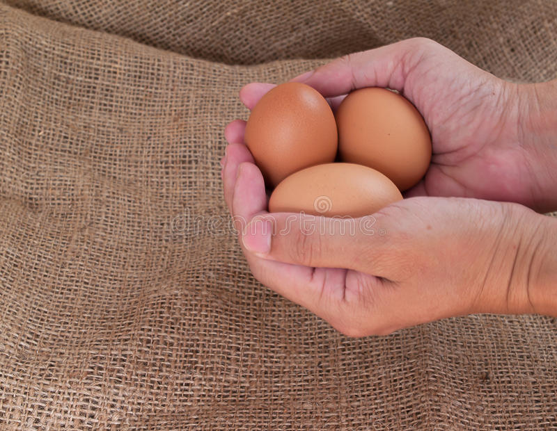 Oeuf, nourritures riches en protéine image libre de droits