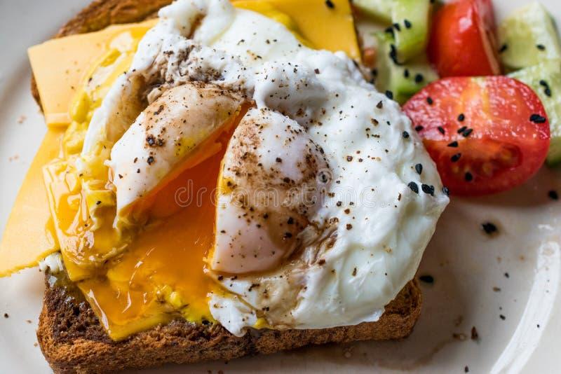 Oeuf poché sur le pain de pain grillé avec du fromage de cheddar, vinaigre balsamique, salade et sésame ou graines de cumin noir photo libre de droits