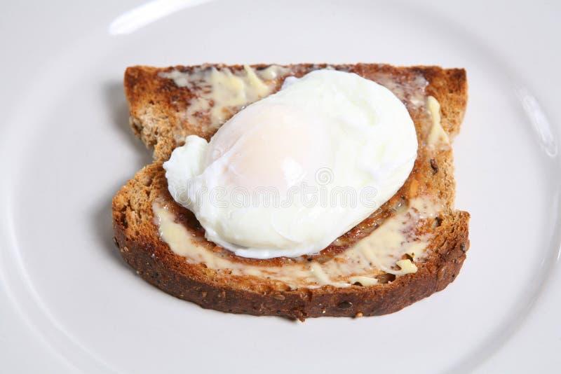 Oeuf poché sur le pain grillé image stock