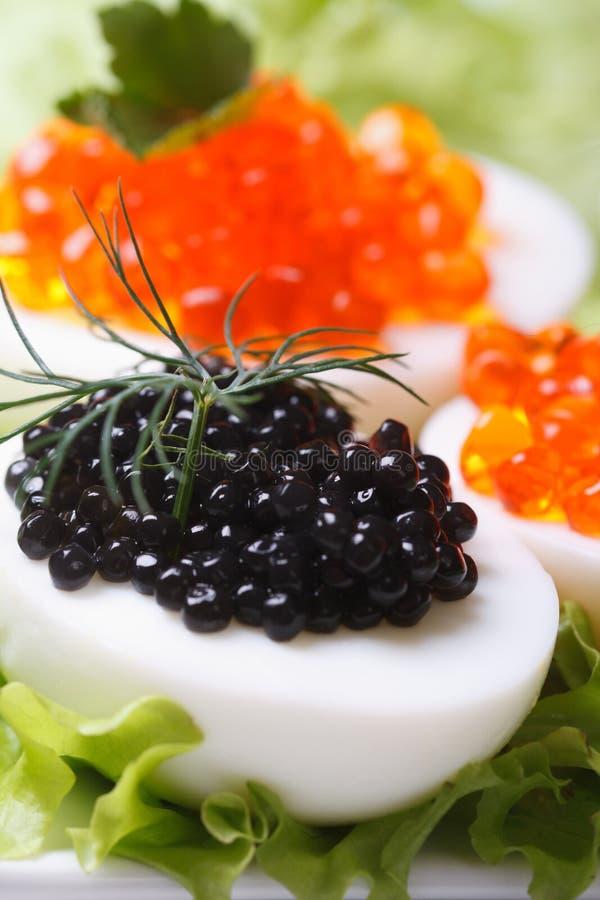 Oeufs avec le macro noir de caviar et de laitue de poissons photos libres de droits