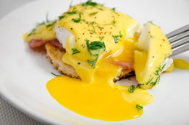 Oeufs Benoît pour le petit déjeuner d'un plat blanc, jaune liquide image libre de droits