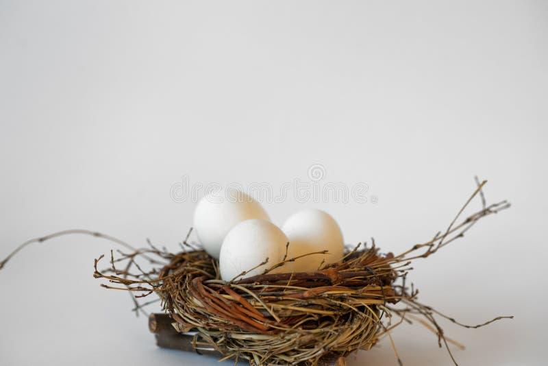 Oeufs blancs dans un nid sur le fond blanc image libre de droits