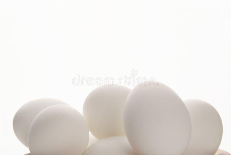 Oeufs blancs de neige image stock