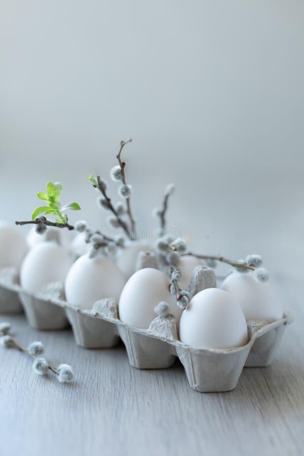 Oeufs blancs de poulet dans une boîte en carton ouverte sur un fond clair décoré des branches de saule avec les bourgeons blancs  image stock
