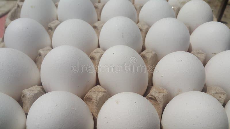 Oeufs blancs de poulet frais de ferme dans un oeuf-carton placé sur le marché photographie stock libre de droits