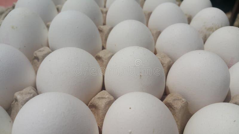 Oeufs blancs de poulet frais de ferme dans un oeuf-carton placé sur le marché photos libres de droits