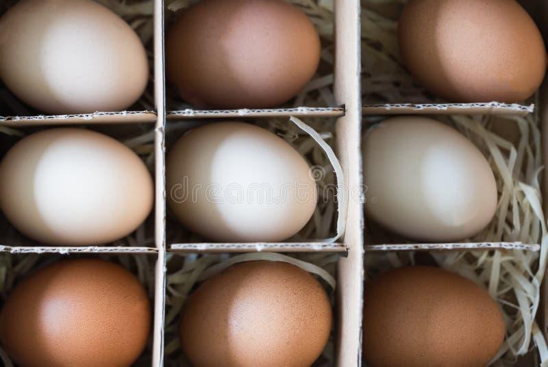 Oeufs blancs et bruns crus frais de poulet dans une boîte en carton Vue sup?rieure Concept écologique et d'aliment biologique images stock