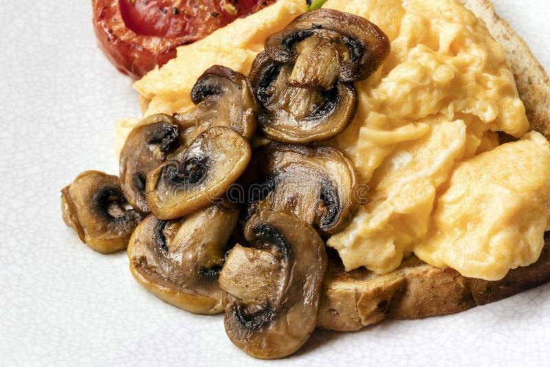 Oeufs brouillés sur le pain grillé avec les champignons et la tomate photo stock