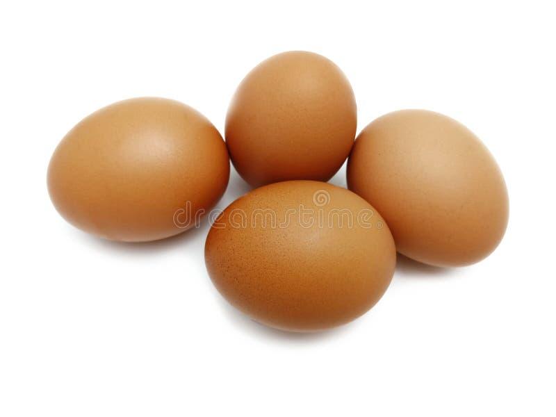 Oeufs bruns frais crus de poulet image stock