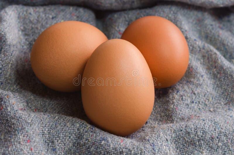 Oeufs crus en gros plan de poulet sur le tissu image stock