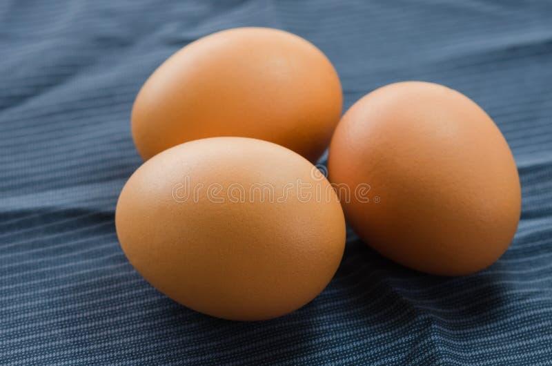 Oeufs crus en gros plan de poulet sur le tissu photo libre de droits