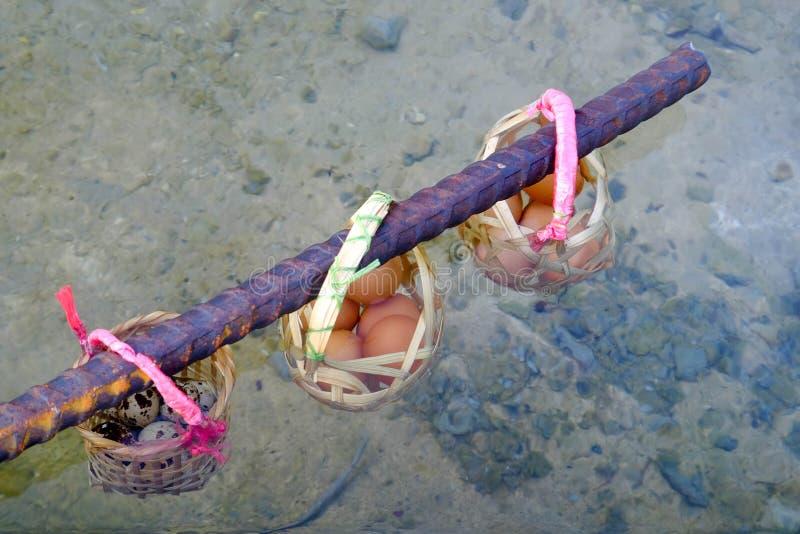 Oeufs d'ébullition dans l'étang de source thermale image stock