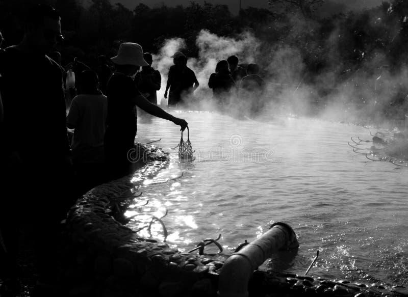 Oeufs d'ébullition dans la piscine chaude d'eau de source images libres de droits