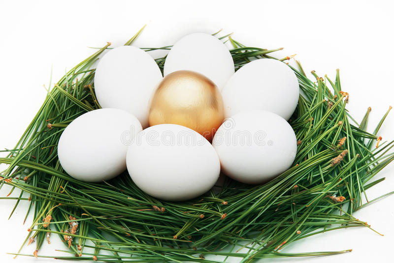 Oeufs d'or photo stock