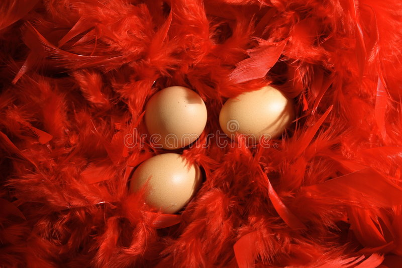 Oeufs dans les clavettes rouges image libre de droits