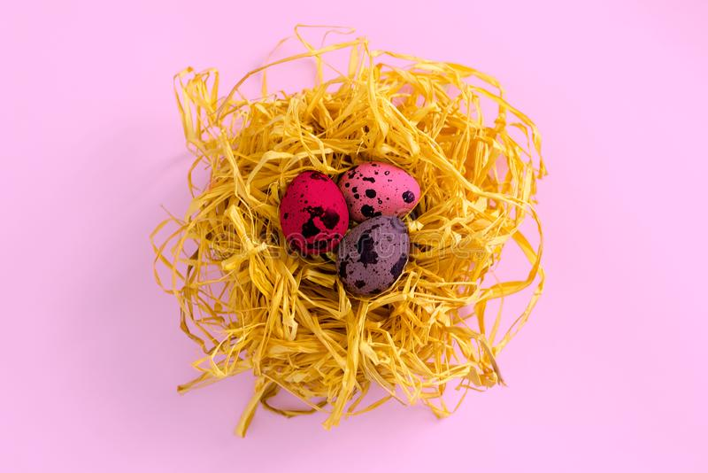 Oeufs de caille dans un nid décoratif sur un fond coloré La vue à partir du dessus Le concept de la célébration de Pâques images stock