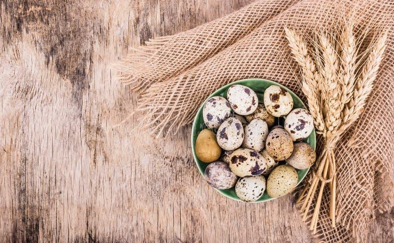 Oeufs de caille et oreilles frais de blé sur le conseil en bois Produits organiques photo stock