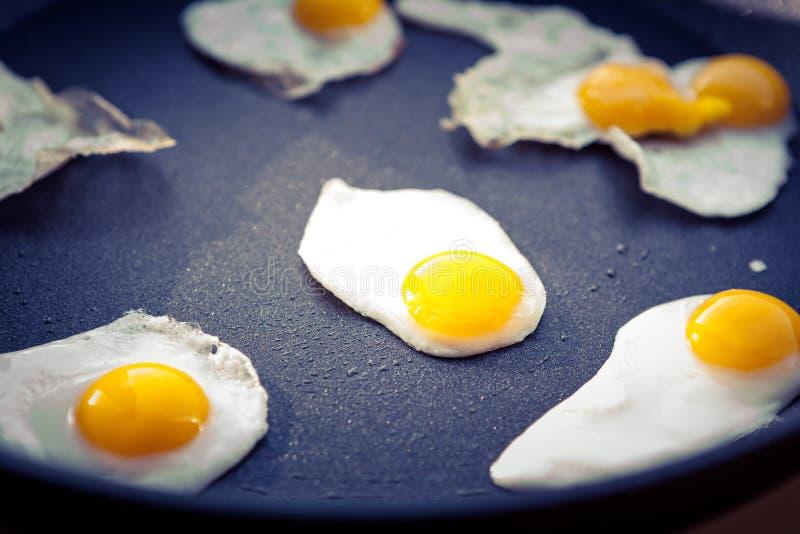 Oeufs de caille pour le petit déjeuner photo libre de droits