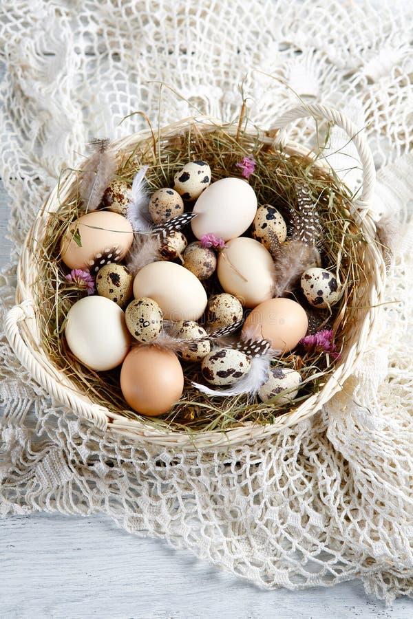 Oeufs de ferme pour Pâques photographie stock