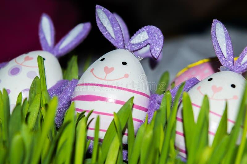 Oeufs de lapin dans l'herbe photographie stock libre de droits