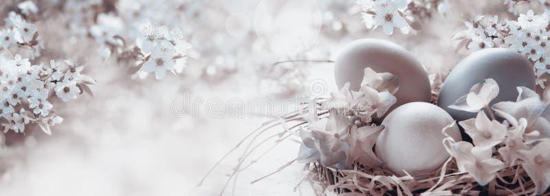 Oeufs de pâques avec des fleurs de ressort photographie stock libre de droits