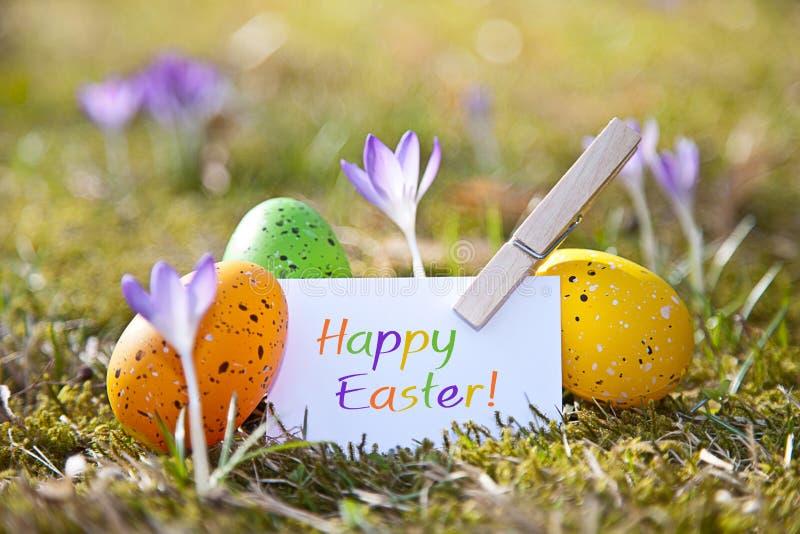 Oeufs de pâques avec le mot Joyeuses Pâques image libre de droits