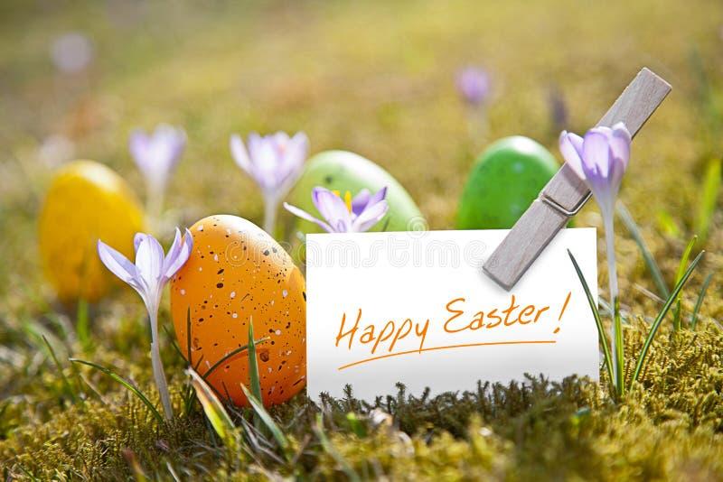 Oeufs de pâques avec le mot Joyeuses Pâques images stock