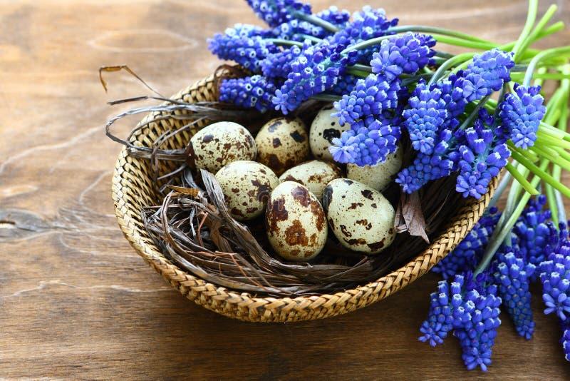 Oeufs de pâques avec les fleurs bleues photos libres de droits
