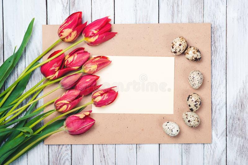 Oeufs de pâques, belles tulipes rouges, note vide sur le fond en bois image libre de droits