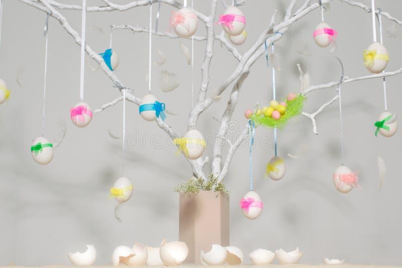 Oeufs de pâques sur l'arbre photographie stock libre de droits