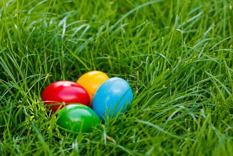 Oeufs de pâques colorés dans l'herbe images libres de droits
