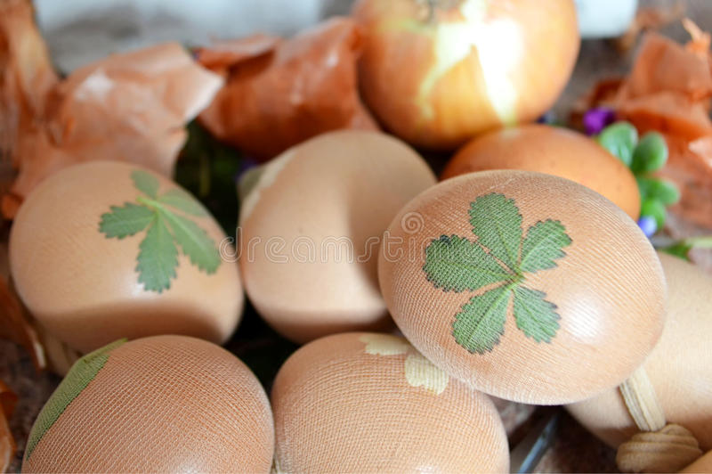 Oeufs de pâques colorant à l'oignon photographie stock libre de droits