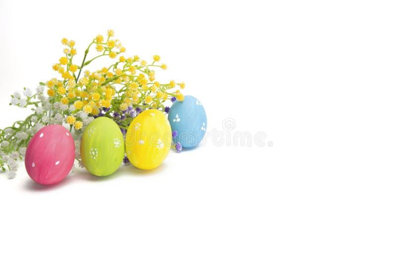 Oeufs de pâques décorés avec les wildflowers colorés d'isolement photo stock