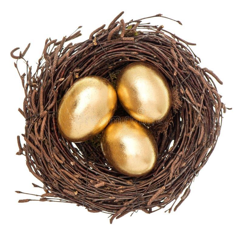 Oeufs de pâques d'or dans le nid d'isolement sur le blanc photos libres de droits