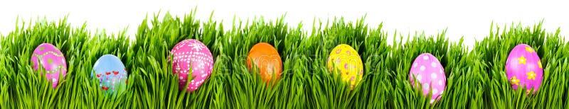 Oeufs de pâques peints à la main image stock