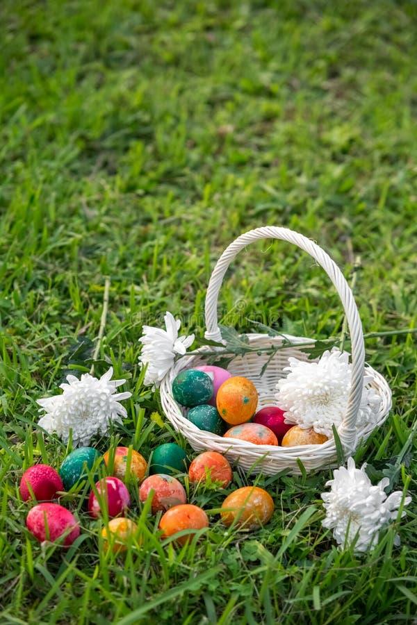 Oeufs de pâques sur la pelouse photographie stock libre de droits