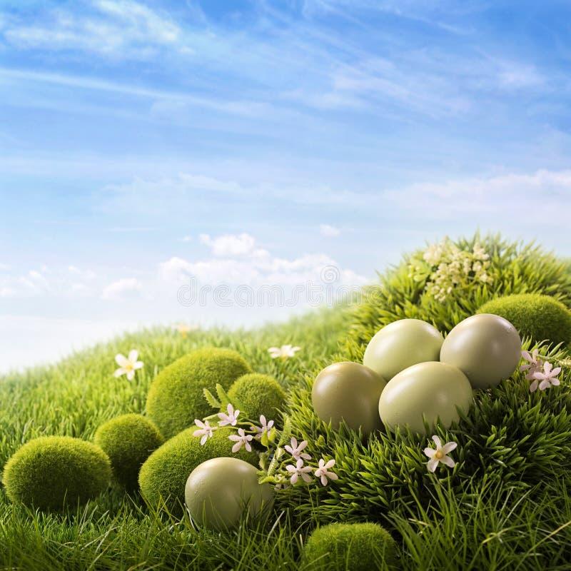 Oeufs de pâques verts images stock