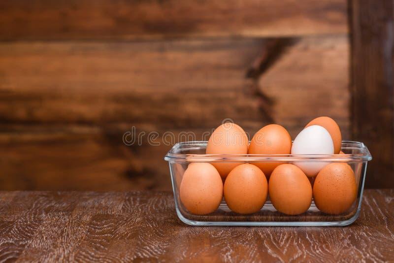 Oeufs de poulet photos libres de droits