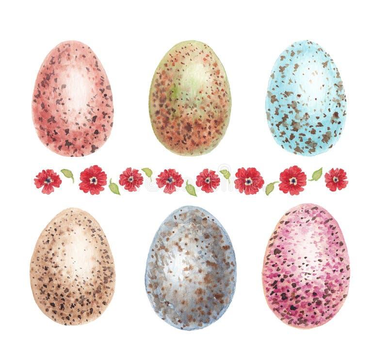 Oeufs de poulet d'aquarelle avec des taches et des fleurs illustration de vecteur