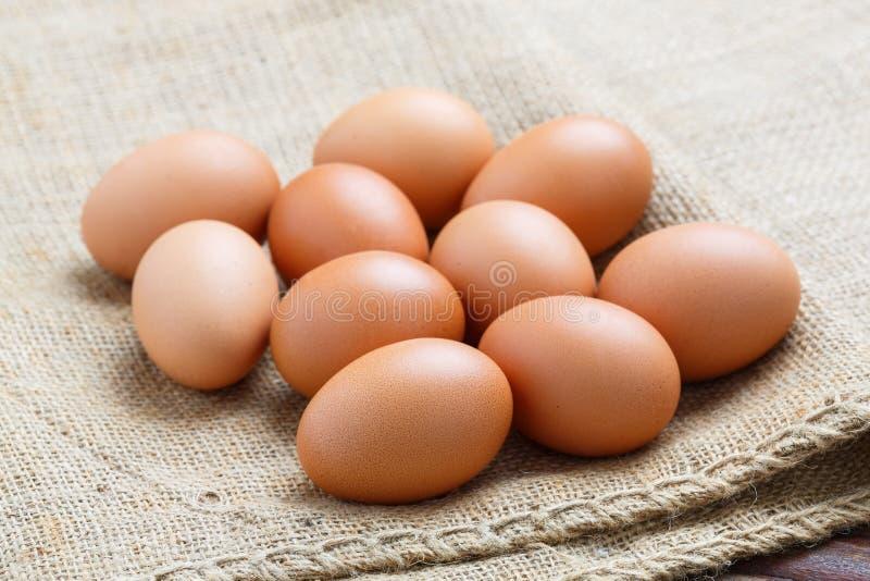 Oeufs de poulet sur le tissu de sac photos libres de droits