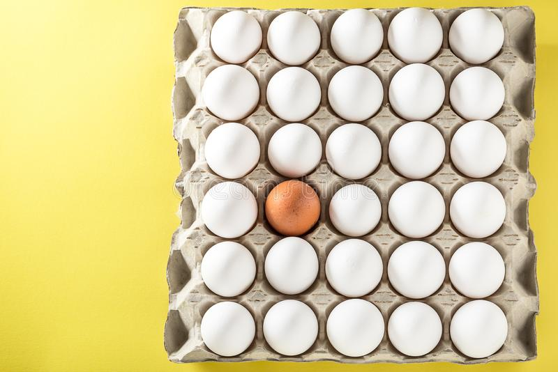 Oeufs emballés dans le carton ou des boîtes pour le transport photographie stock