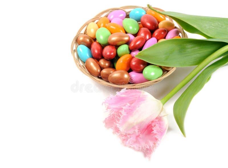 Oeufs et fleur de pâques photographie stock libre de droits