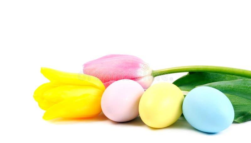 Oeufs et fleurs de pâques photographie stock libre de droits