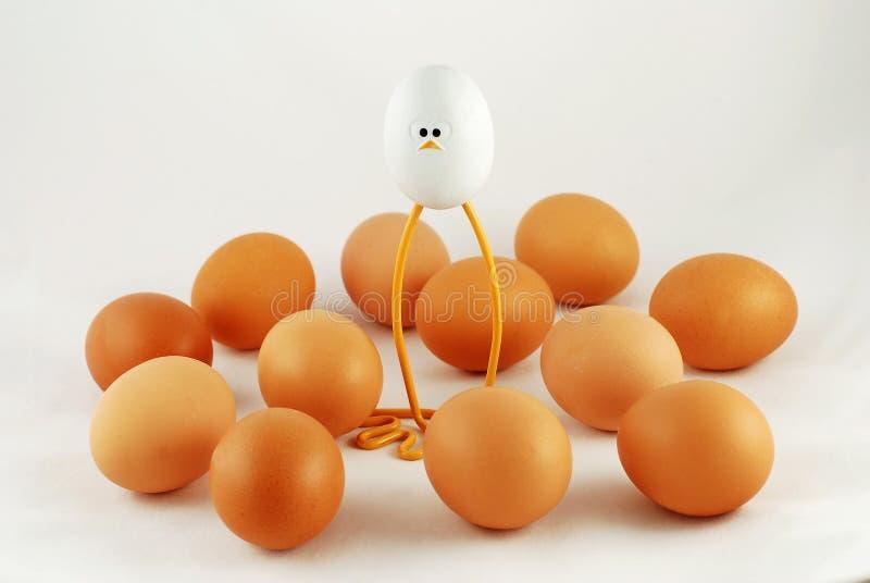 Oeufs et un poulet de jouet photo stock