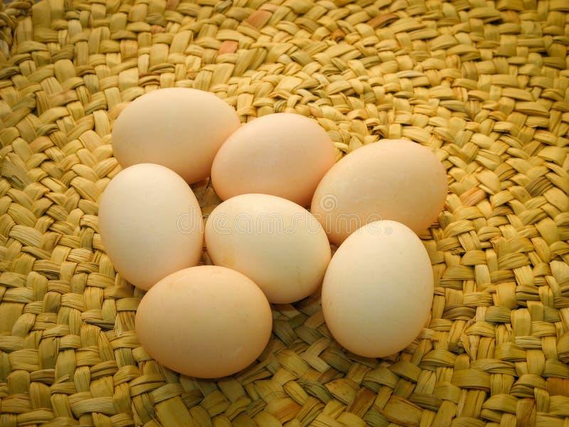 Oeufs organiques de poulet de Brown sur le tapis tissé plan rapproché du poulet cru frais d'oeufs d'isolement sur un fond de tapi photographie stock