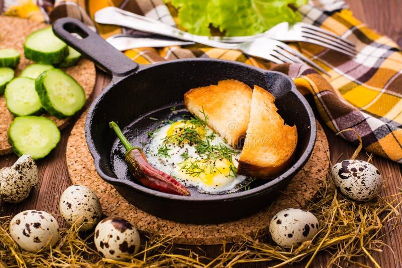 Oeufs sur le plat de caille dans une casserole, un concombre, un poivre et un pain de fer images libres de droits
