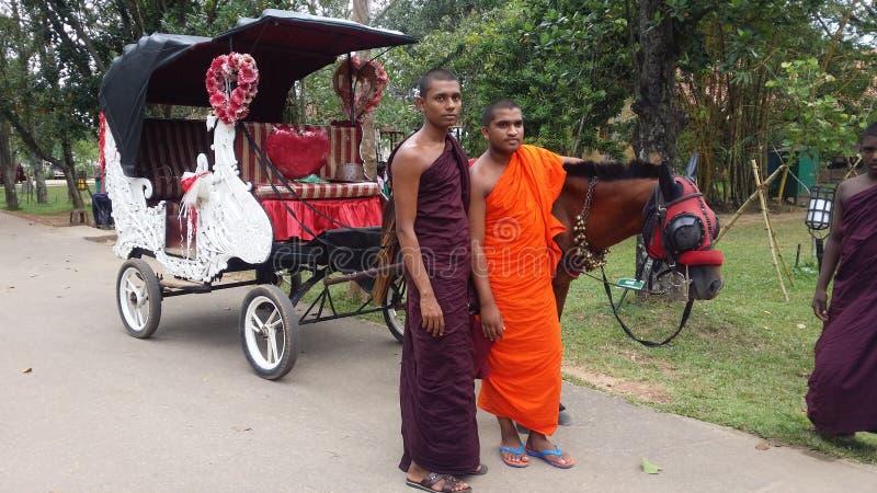 Oeuvre d'art sri-lankaise photos stock