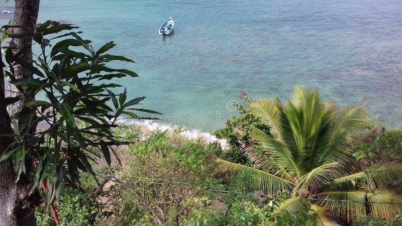 Oever bij Castara-Baai in Tobago royalty-vrije stock fotografie