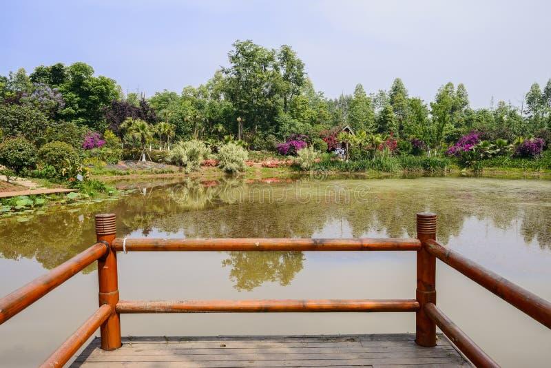 Oever van het meer geschermd het bekijken platform in de zonnige het bloeien zomer royalty-vrije stock foto's