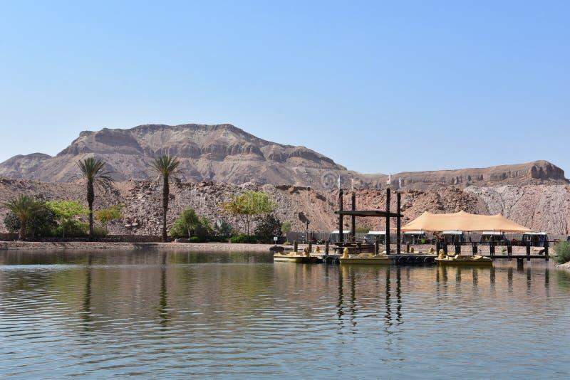 Oever van het meer Israëlisch nationaal park Timna stock afbeeldingen
